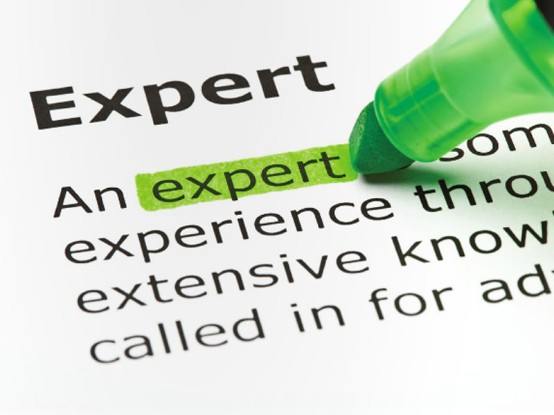 expert witness Comments on expert witness what made you want to look up expert witnessplease tell us where you read or heard it (including the quote, if possible.